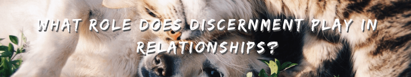 What Role Does Discernment Play In Relationships? – Text